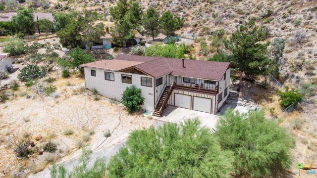 49038 Vista Drive, Morongo Valley, CA 92256 (#19483324PS) :: Randy Plaice and Associates
