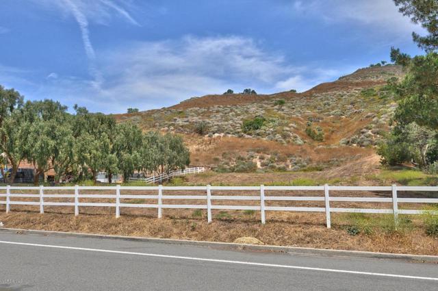 Barranca Road, Santa Rosa (Ven), CA 93012 (#219008099) :: The Fineman Suarez Team