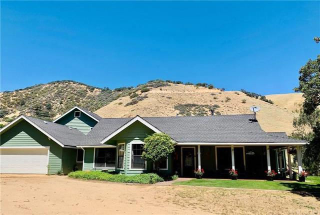 3037 Lebec Oaks Road, Lebec, CA 93243 (#SR19163113) :: Paris and Connor MacIvor