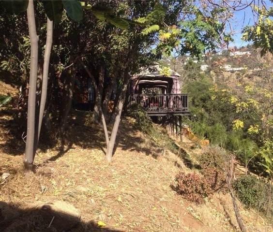 8164 Gould Avenue, Hollywood Hills, CA 90046 (#SR19163309) :: The Agency
