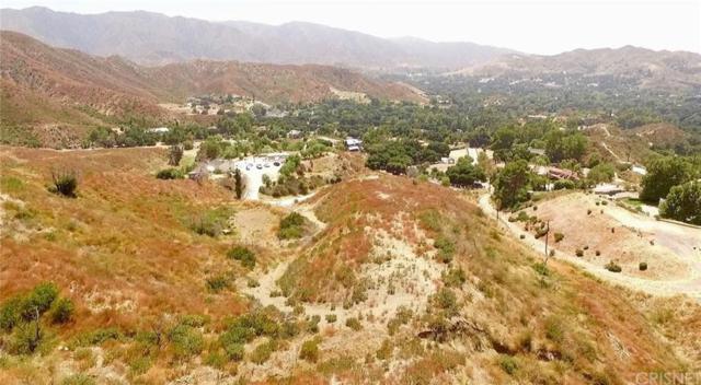 0 Vac Iron Canyon, Canyon Country, CA 91387 (#SR19167455) :: Lydia Gable Realty Group
