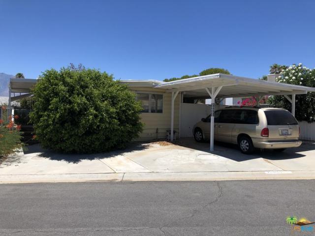16851 Sunrise Road, Desert Hot Springs, CA 92241 (#19491252PS) :: The Pratt Group
