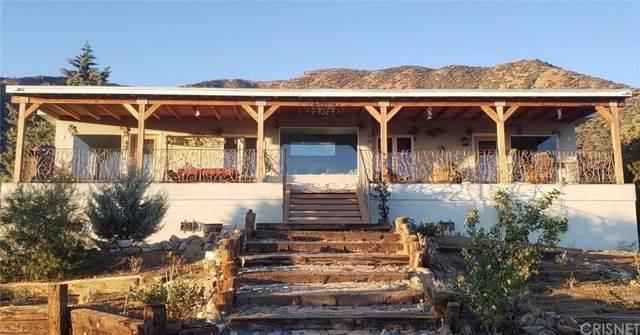 11046 Juniper Hills Road, Juniper Hills, CA 93543 (#SR19177334) :: Golden Palm Properties