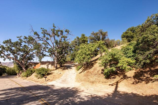 1192 Black Canyon Road, Simi Valley, CA 93063 (#219009781) :: TruLine Realty