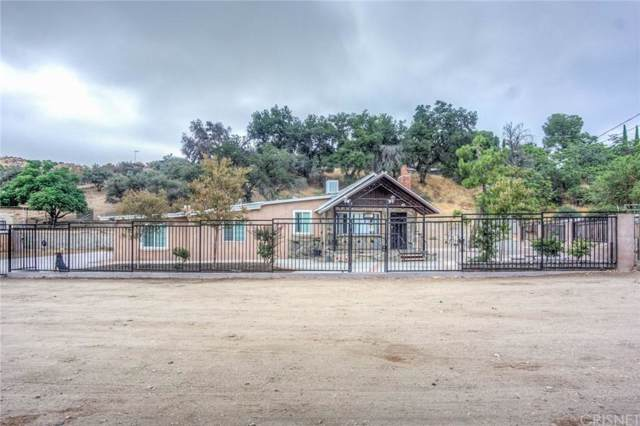 13303 Sierra Highway, Agua Dulce, CA 91390 (#SR19228339) :: Lydia Gable Realty Group