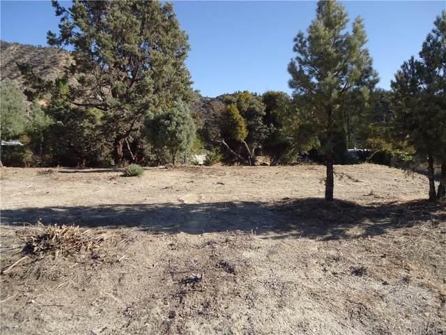 0 Santa Clara, Frazier Park, CA  (#SR19230017) :: Golden Palm Properties