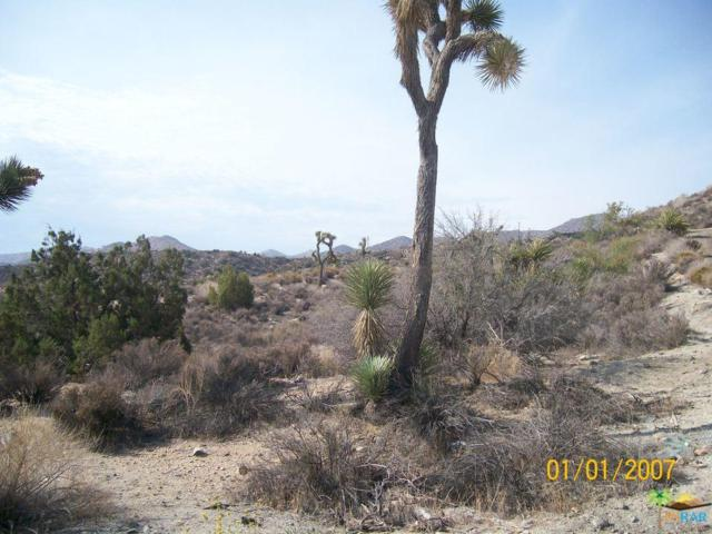 0 Onaga, Yucca Valley, CA 92284 (#14791531PS) :: Lydia Gable Realty Group
