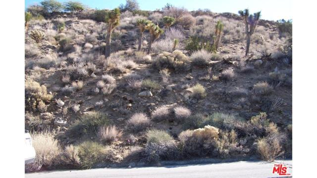 54785 Onaga Trails, Yucca Valley, CA 92284 (#14816843PS) :: Paris and Connor MacIvor