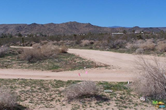 0 Old Woman Springs Road, Yucca Valley, CA 92284 (#15881009PS) :: The Fineman Suarez Team