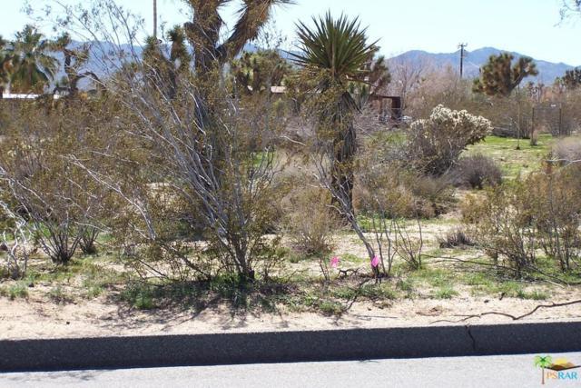 0 Buena Vista Drive, Yucca Valley, CA 92284 (#15882767PS) :: The Fineman Suarez Team