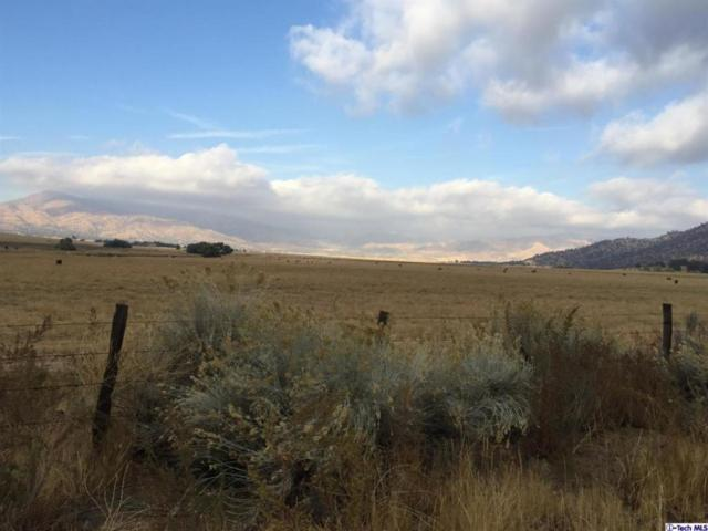 Williams, East Of Johns Road Road, Caliente, CA 93518 (#316009254) :: Paris and Connor MacIvor