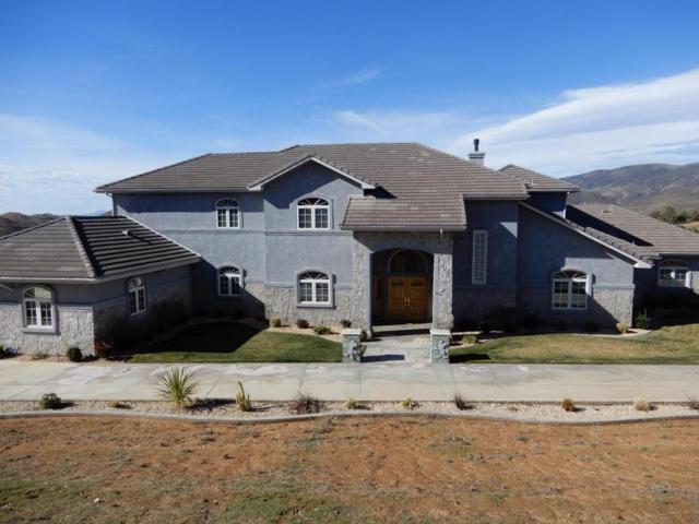 7217 Spigno Place, Agua Dulce, CA 91390 (#217004725) :: Paris and Connor MacIvor
