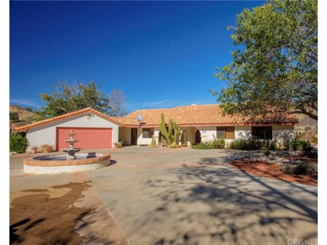35211 Glenwall Street, Agua Dulce, CA 91390 (#SR17244654) :: The Real Estate Offices of Talbot and Watson