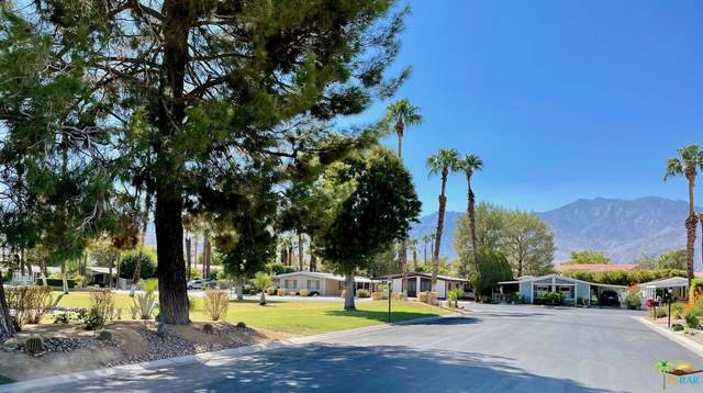 207 Savage Dr, Cathedral City, CA 92234 (#21-777514) :: Lydia Gable Realty Group