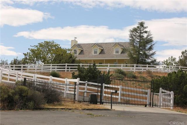 9610 Escondido Canyon Road, Agua Dulce, CA 91390 (#SR19090487) :: The Fineman Suarez Team