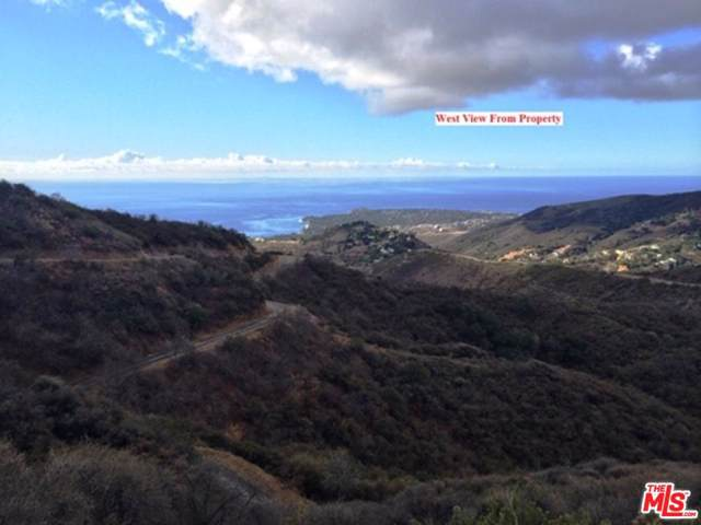 0 Baller Motorway, Malibu, CA 90265 (#19519604) :: Lydia Gable Realty Group