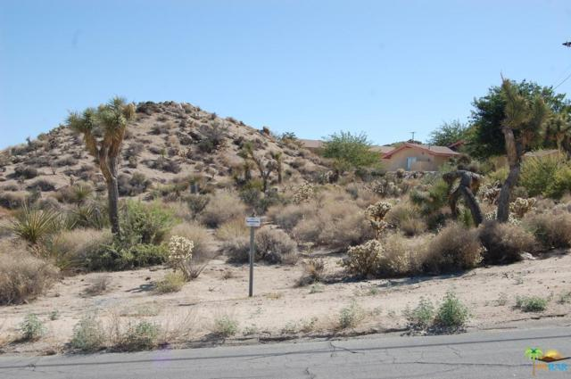 0 Panchita Road, Yucca Valley, CA 92284 (#14771013PS) :: The Agency