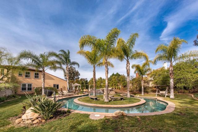 551 Running Creek Court, Simi Valley, CA 93065 (#219000369) :: Lydia Gable Realty Group