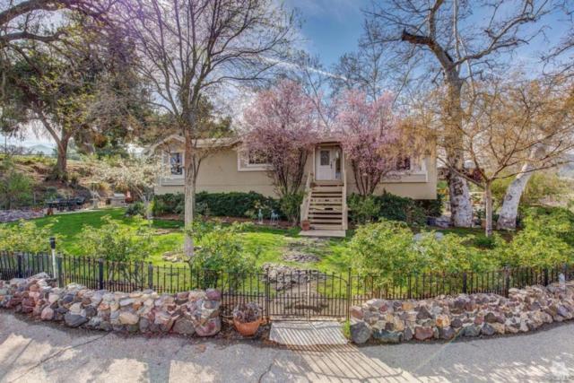 2581 Kanan Road, Agoura Hills, CA 91301 (#214033338) :: Lydia Gable Realty Group