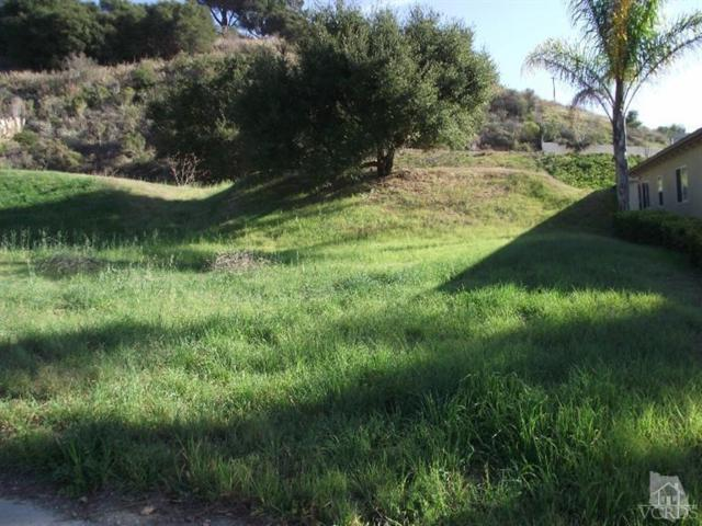 Bridgeview Drive, Ventura, CA 93003 (#215001475) :: Lydia Gable Realty Group