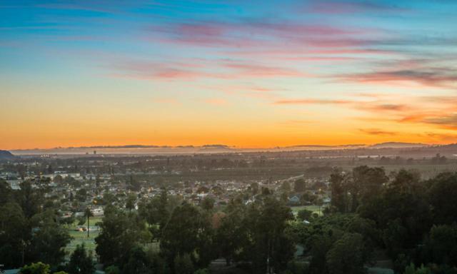 566 Glade Drive, Santa Paula, CA 93060 (#216014741) :: Lydia Gable Realty Group