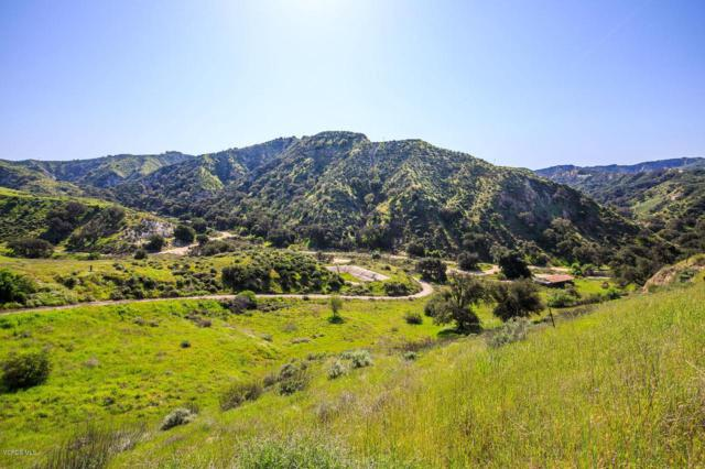 0 Hasley Canyon, Castaic, CA 91384 (#218014376) :: Paris and Connor MacIvor