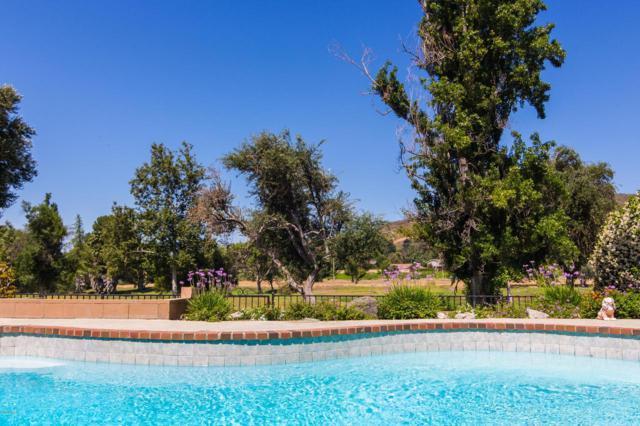 5927 Lake Lindero Drive, Agoura Hills, CA 91301 (#219007987) :: TruLine Realty