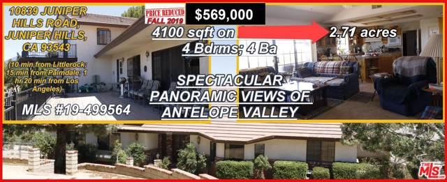10839 Juniper Hills Road, Juniper Hills, CA 93543 (#19499564) :: Golden Palm Properties