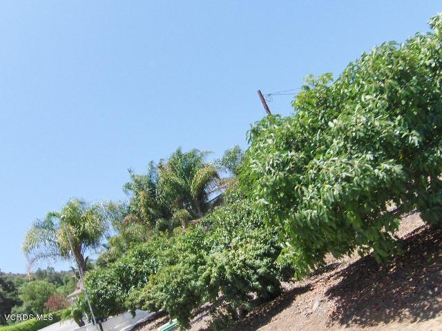 233 E View Drive, Santa Paula, CA 93060 (#217012188) :: California Lifestyles Realty Group