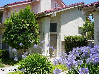 983 Quarterhorse Lane, Oak Park, CA 91377 (#218007656) :: Lydia Gable Realty Group