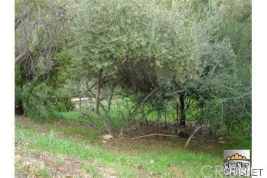 4260 Alhama, Woodland Hills, CA  (#SR18148768) :: Golden Palm Properties