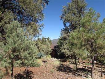 15416 Live Oak Way, Pine Mountain Club, CA  (#SR19253083) :: TruLine Realty