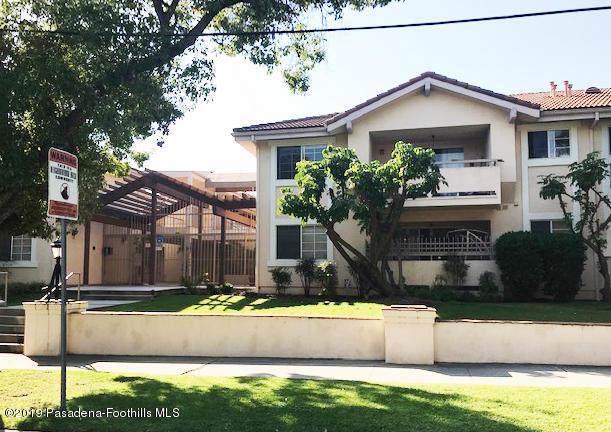 449 N Catalina Avenue #213, Pasadena, CA 91106 (#819005339) :: TruLine Realty