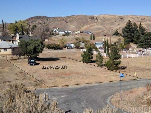 0 Vac/Lowhill Dr/Vic Ripton Road, Lake Hughes, CA 93532 (#SR19270912) :: Lydia Gable Realty Group