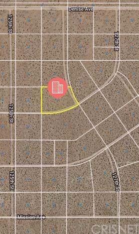 0 127TH Street, Mojave, CA 93501 (#SR20008840) :: The Pratt Group