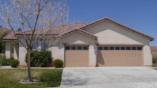 39919 Meadowcrest Way, Palmdale, CA 93551 (#SR20014366) :: Randy Plaice and Associates