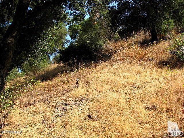 Agoura Road, Agoura Hills, CA 91301 (#220000912) :: Lydia Gable Realty Group