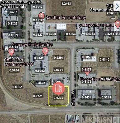11 Vac/Cor Avenue N/11Th Stw, Palmdale, CA 93551 (#SR20035543) :: TruLine Realty