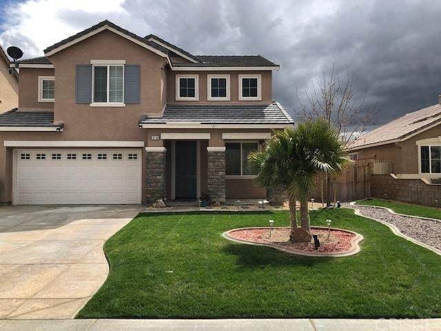 3116 Perdot Avenue, Rosamond, CA 93560 (#SR20058613) :: Lydia Gable Realty Group