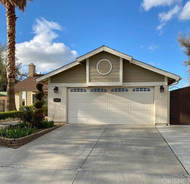 3857 Castala Drive, Palmdale, CA 93550 (#SR20065313) :: Randy Plaice and Associates