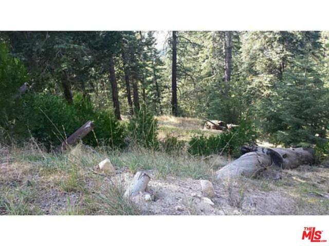 0 Mid Ln, Twin Peaks, CA 92391 (MLS #19-526936) :: Mark Wise | Bennion Deville Homes