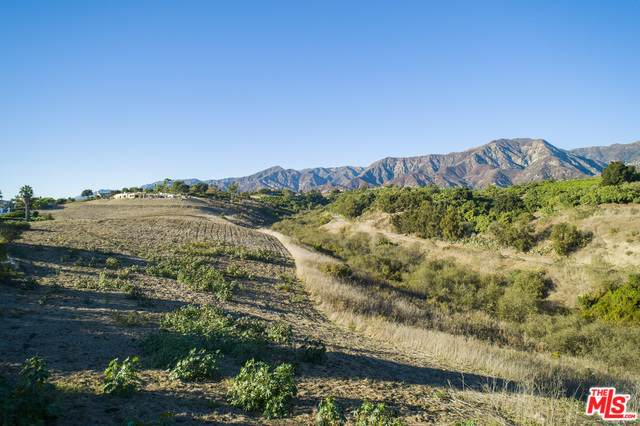 201 Olive St, Summerland, CA 93067 (#19-531880) :: Compass