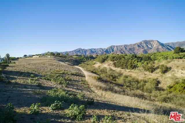 201 Olive St, Summerland, CA 93067 (#19-531880) :: Randy Plaice and Associates