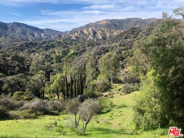 0 Topanga Skyline Dr, Topanga, CA 90290 (#20-549302) :: The Pratt Group