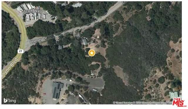 0 0, Topanga, CA 90290 (MLS #20-562548) :: The Sandi Phillips Team