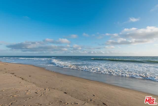 11770 Pacific Coast Hwy S, Malibu, CA 90265 (#20-572860) :: Lydia Gable Realty Group