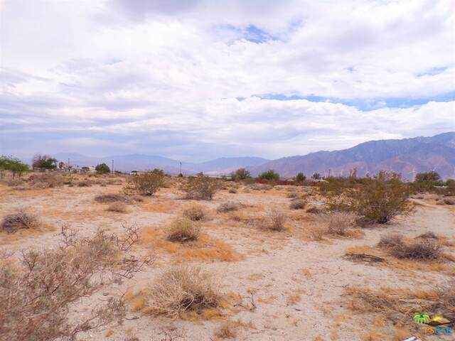 2 13th Ave, Desert Hot Springs, CA 92240 (#20-579900) :: TruLine Realty