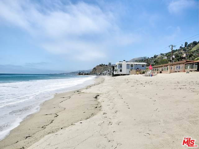 21465 Pacific Coast Hwy, Malibu, CA 90265 (#20-582666) :: Randy Plaice and Associates
