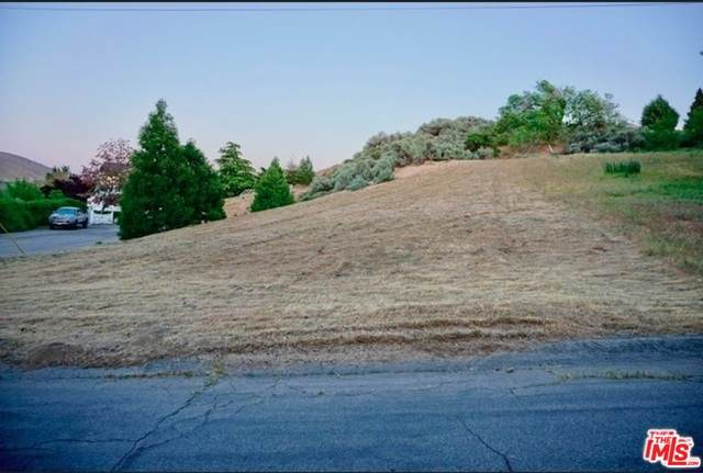0 Vac/Ranch Club/Vic Lakem Dr, ELIZABETH LAKE, CA 93532 (#20-591038) :: Randy Plaice and Associates