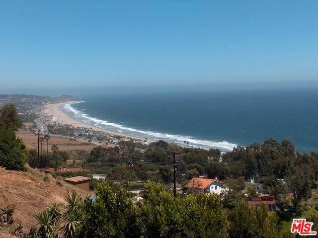 31345 Pacific Coast Hwy - Photo 1